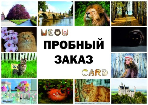 22MyCollages-(10)